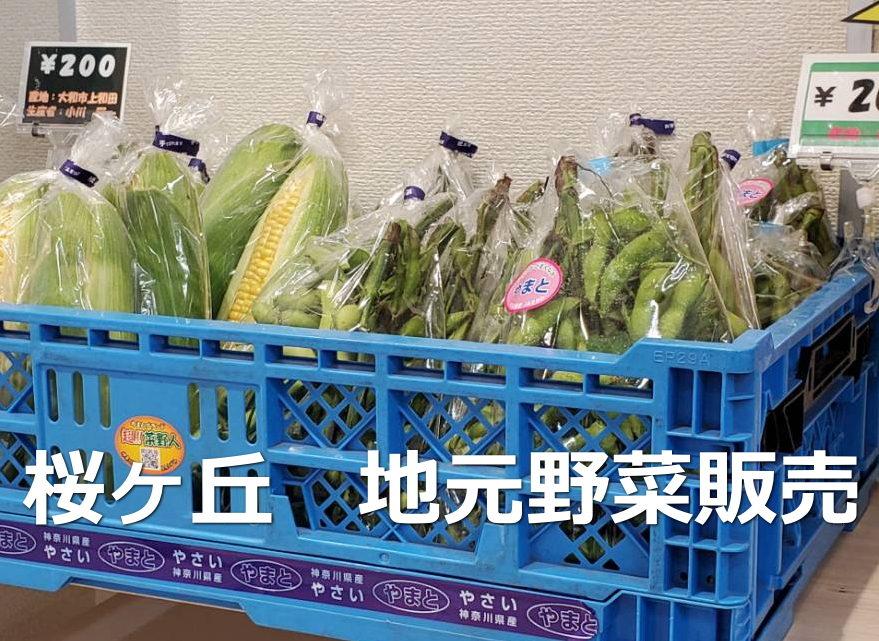 地元野菜販売を再開!